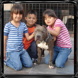 kids and pits