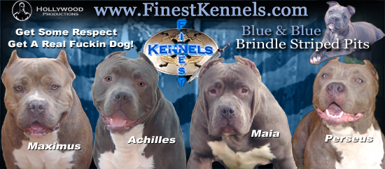 Finest Kennels Forum